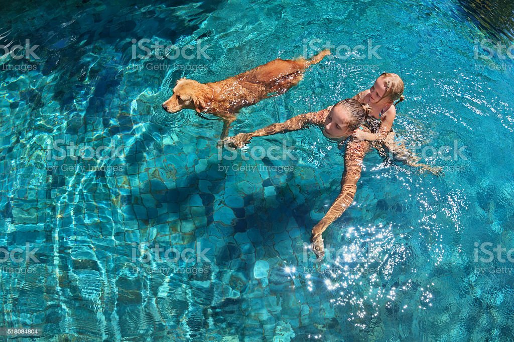 Mother with child on back swim with dog in pool stock photo