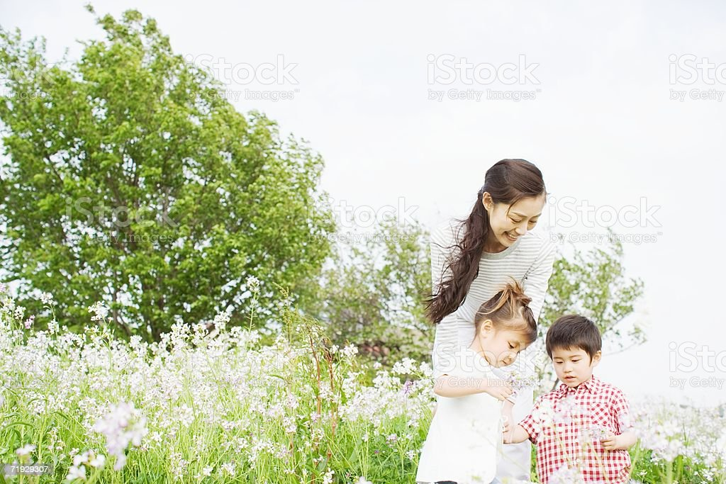 Mother with children in a field royalty-free stock photo