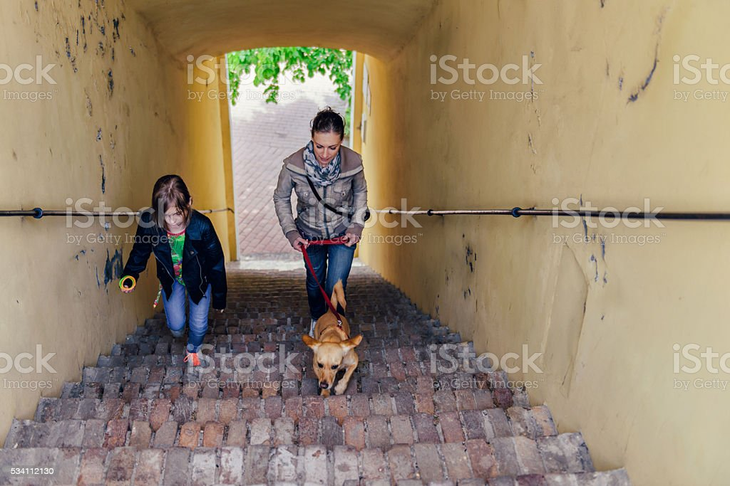 Mother with daughter and dog walking on stairs stock photo