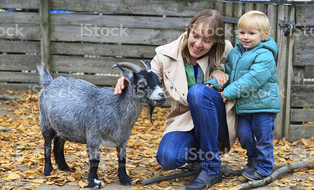 Mother with son at a farm petting a goat royalty-free stock photo