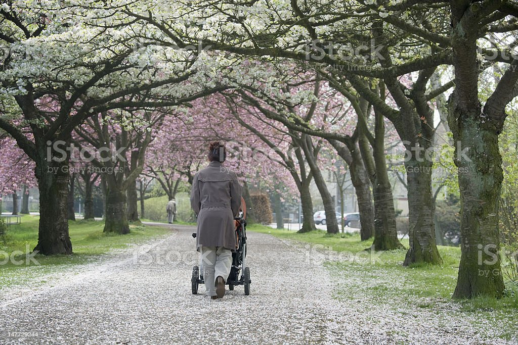 Motherhood - Rear view of young mother pushing baby stroller royalty-free stock photo