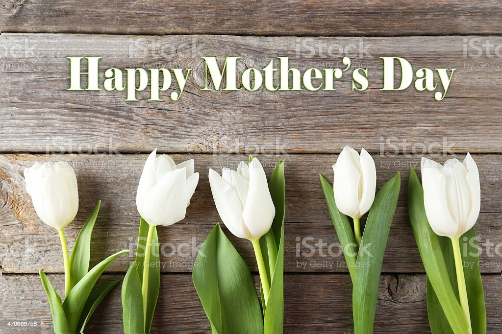 Mother's Day banner with white tulips and wood panel boards stock photo