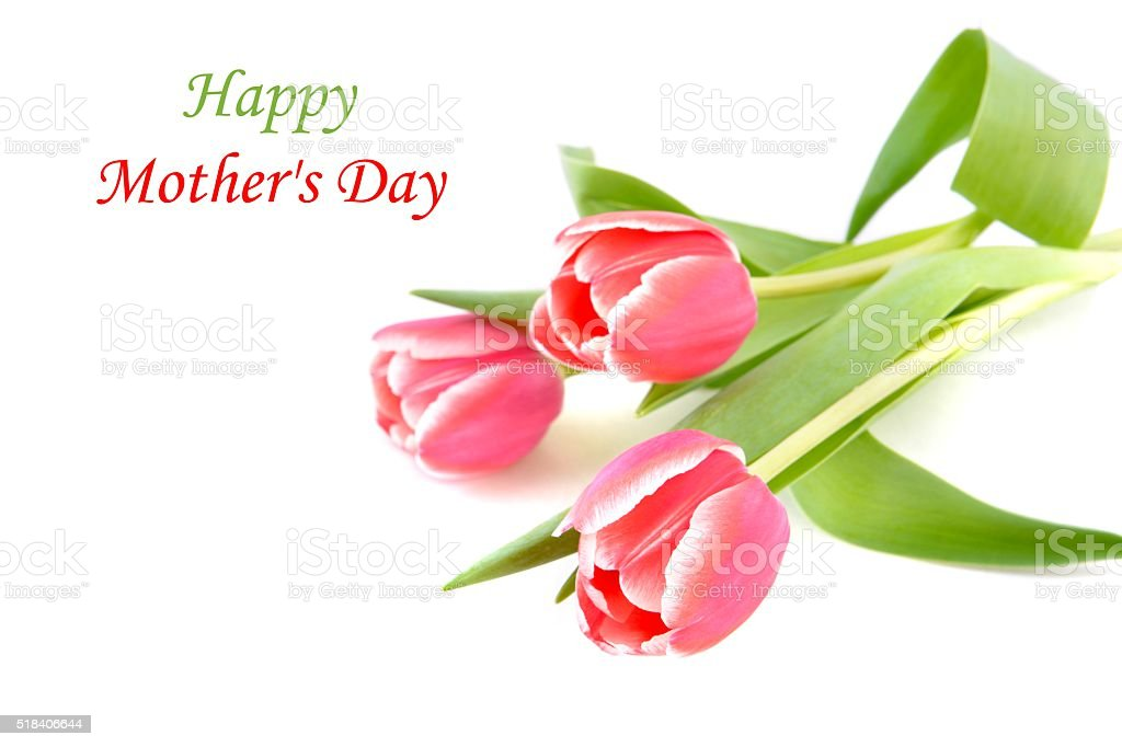Mothers day card with tulips. stock photo