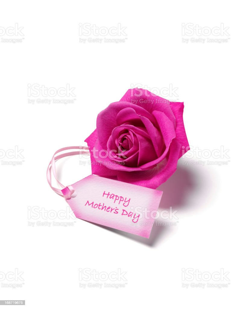Mother's Day Label and Pink Rose royalty-free stock photo