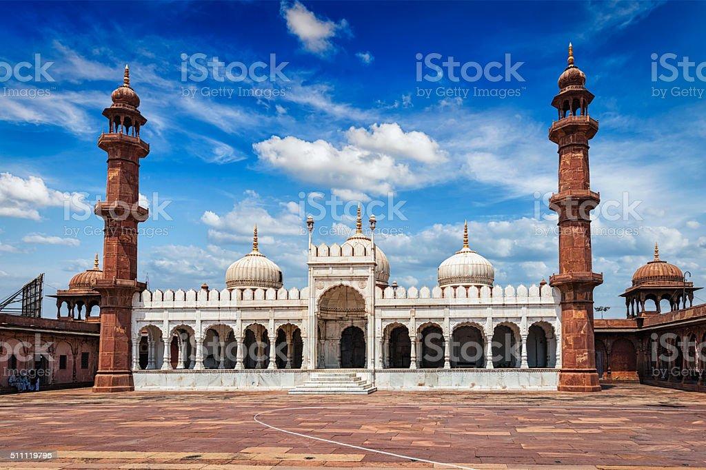 Moti Masjid Pearl Mosque, Bhopal, India stock photo