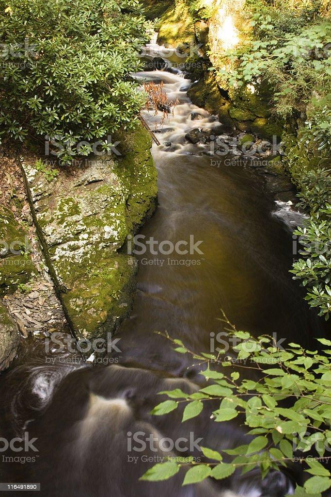 Motion shot of water flow at Bushkill Falls. stock photo