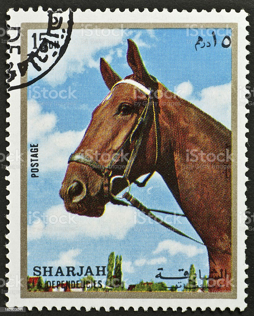 Motive stamp with horse head - Sharjah arab emirates stock photo