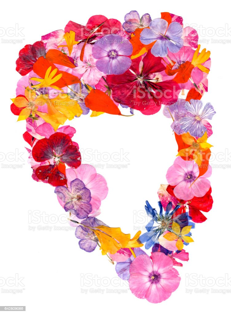 motley multicolored applique clearing of dried pressed flowers stock photo
