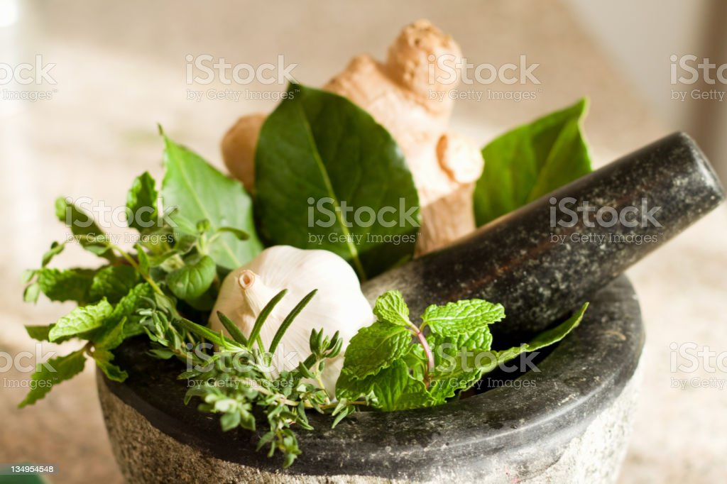 Motor & Pestle with Herbs royalty-free stock photo