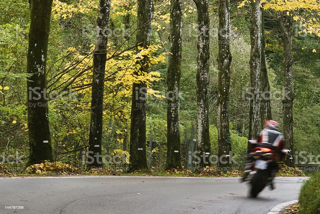 Motorbike in fall royalty-free stock photo
