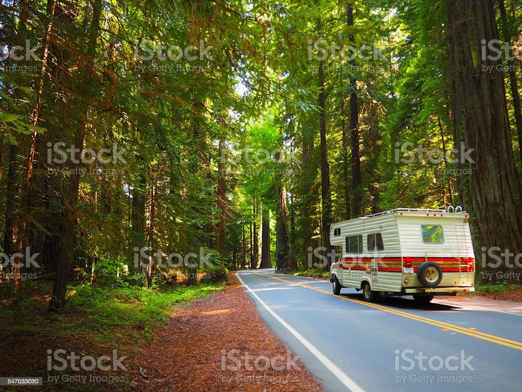 Motorhome driving through Lush, Green, Giant Redwood Forest stock photo