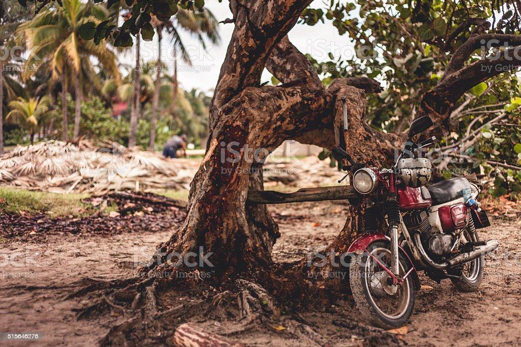 Motorrad mit Baum am Strand stock photo
