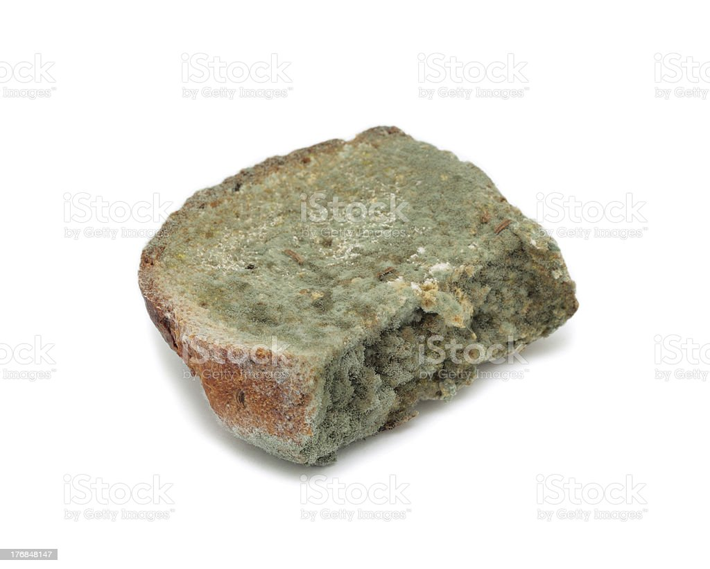 Mouldy bread, isolated royalty-free stock photo