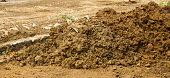 Mound of soils photo taken in Bogor Indonesia