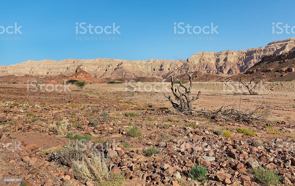 Mount a screw stock photo