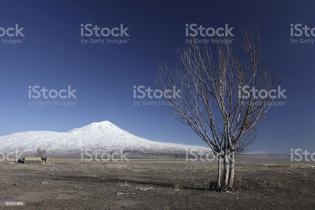 Mount Agri (Ararat) stock photo