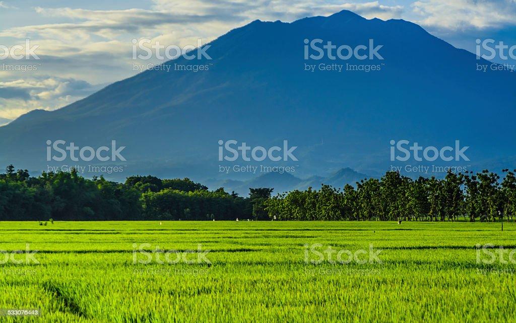 Mount Agung Bali stock photo