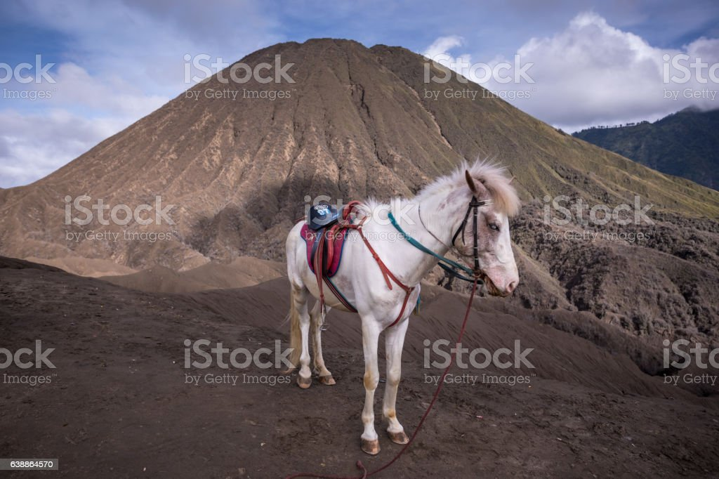 Mount Bromo volcano during sunrise in East Java, Indonesia. stock photo