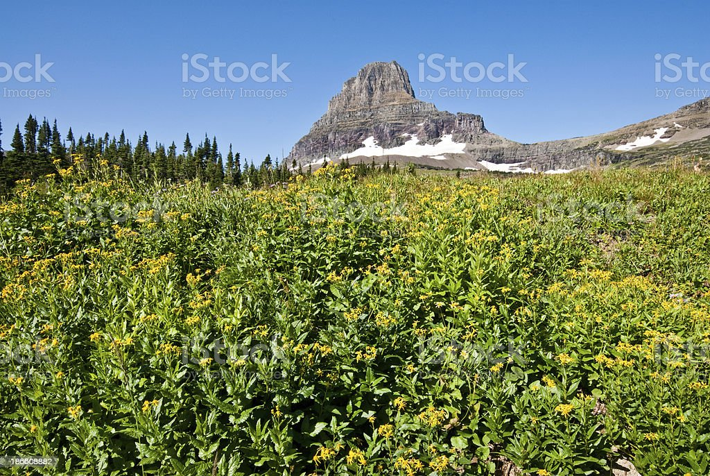 Mount Clements royalty-free stock photo