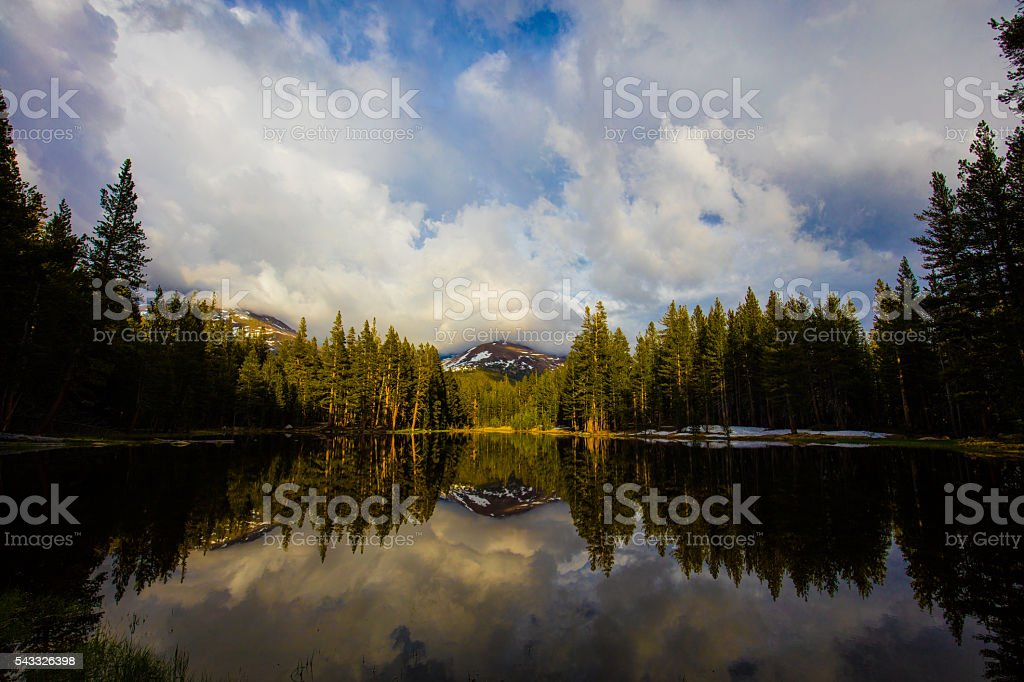 Mount Dana Reflection stock photo