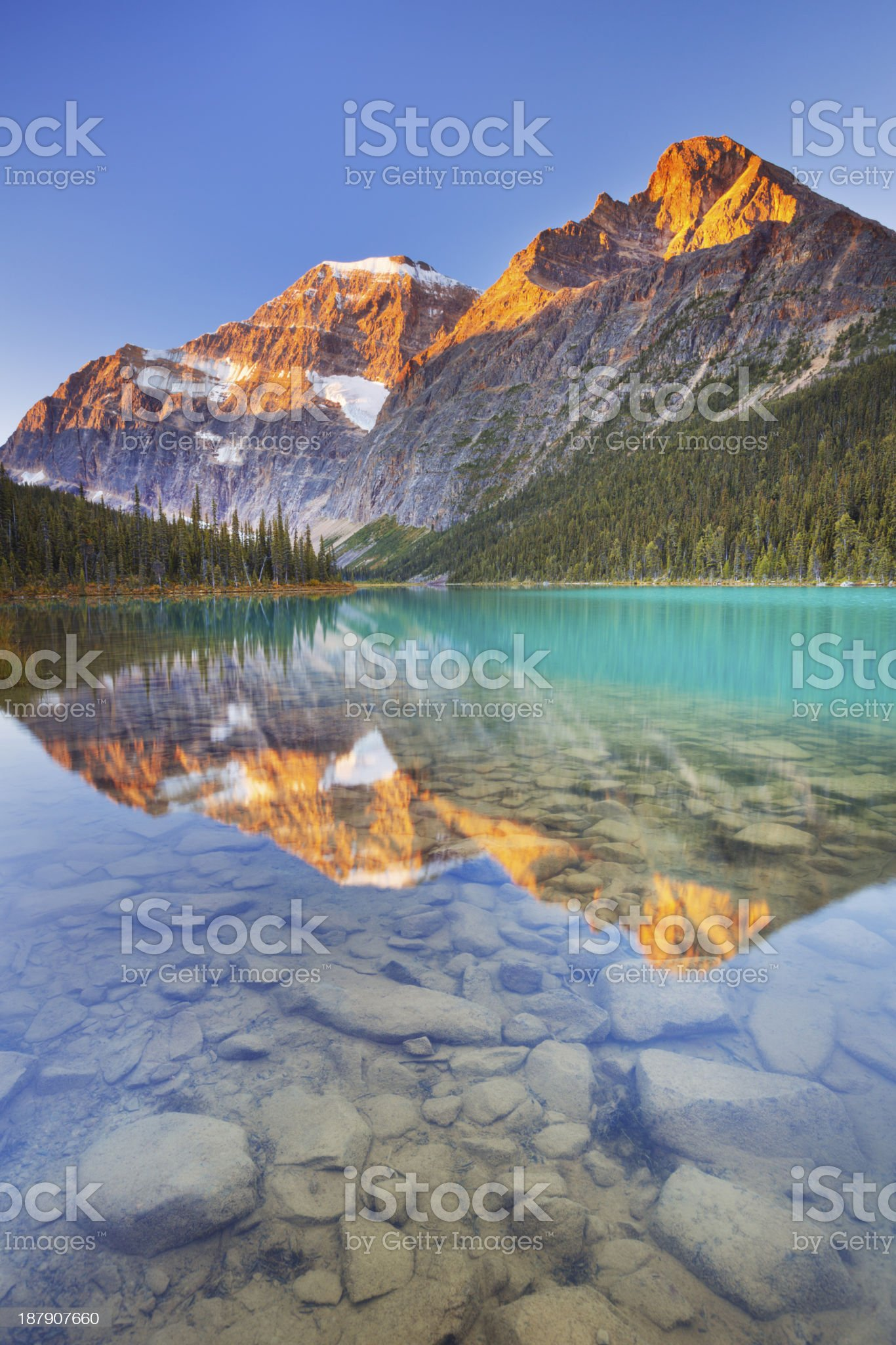 Mount Edith Cavell and lake, Jasper NP, Canada at sunrise royalty-free stock photo