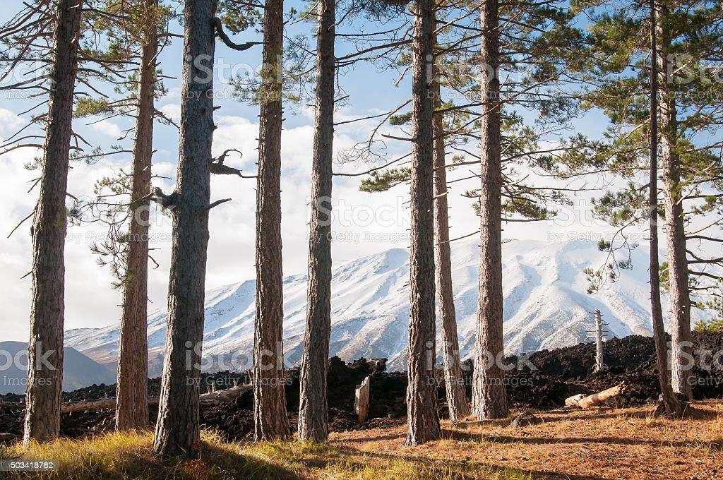 Mount Etna landscapes stock photo