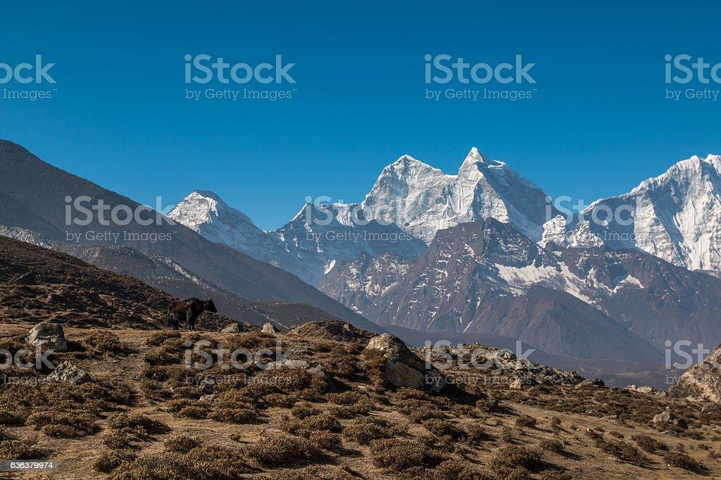 Mount Everest Base Camp Trek Nepal stock photo