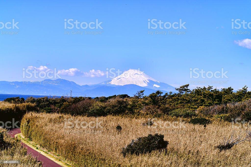 Mount Fuji. stock photo