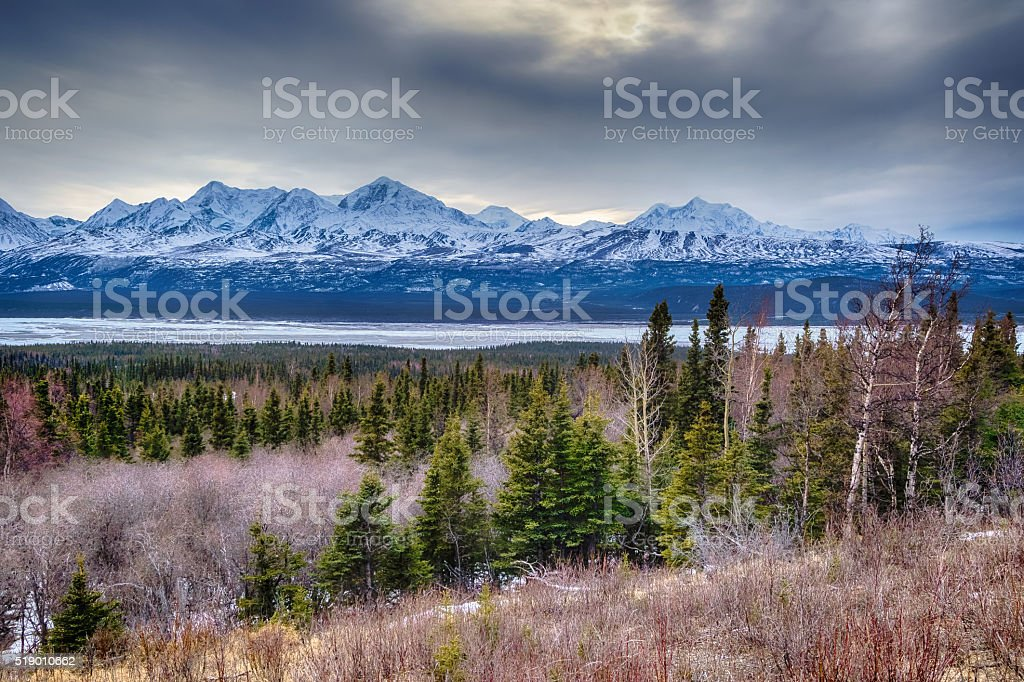 Mount Hayes behind the Delta River stock photo