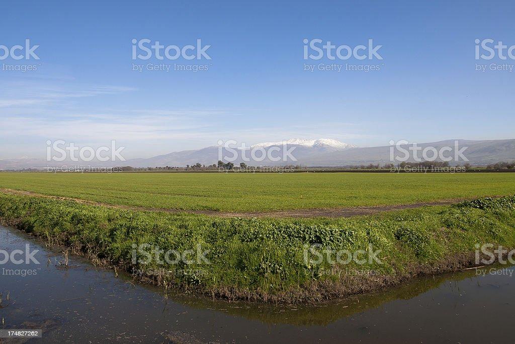 Mount Hermon, Israel royalty-free stock photo