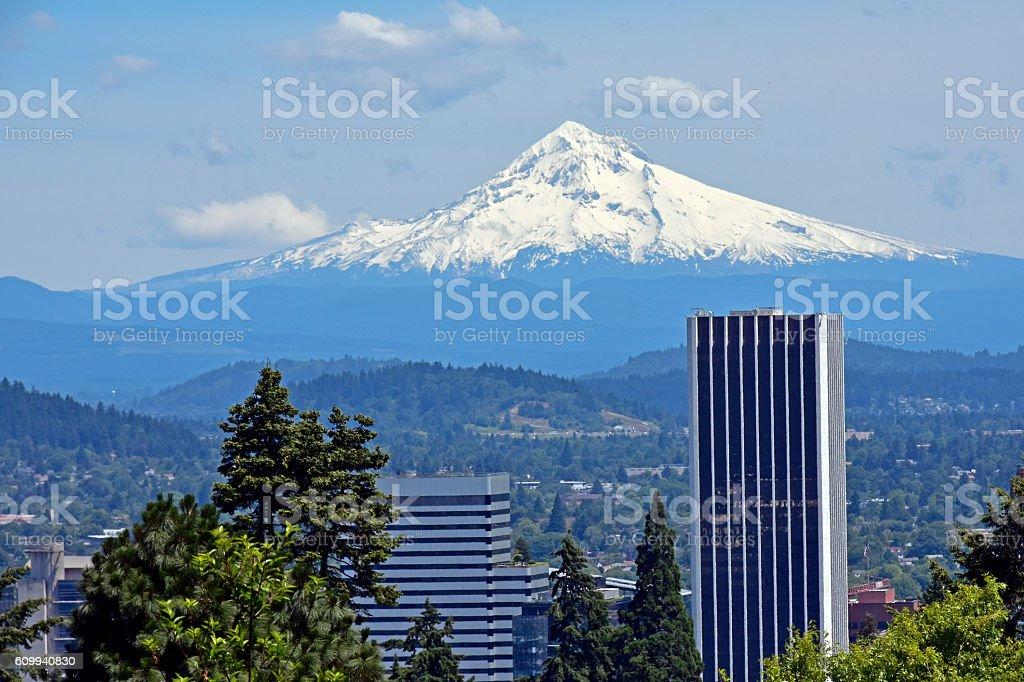 Mount Hood from Japanese Garden stock photo