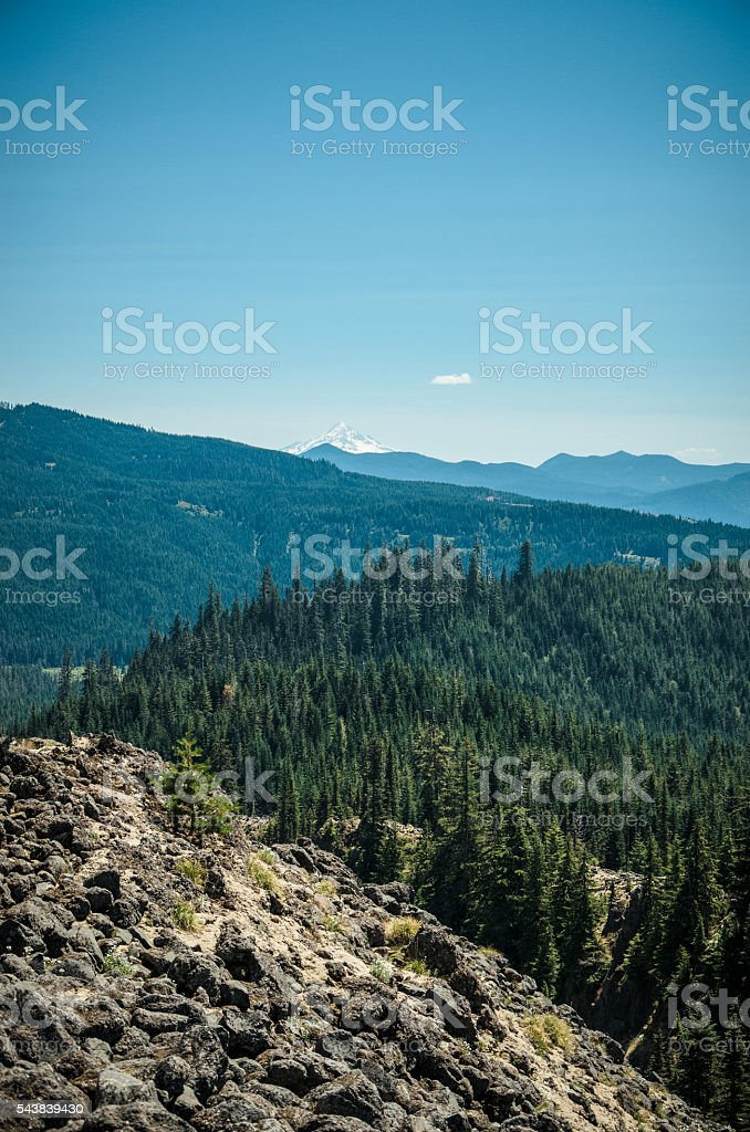 Mount Hood from Mt St Helens stock photo