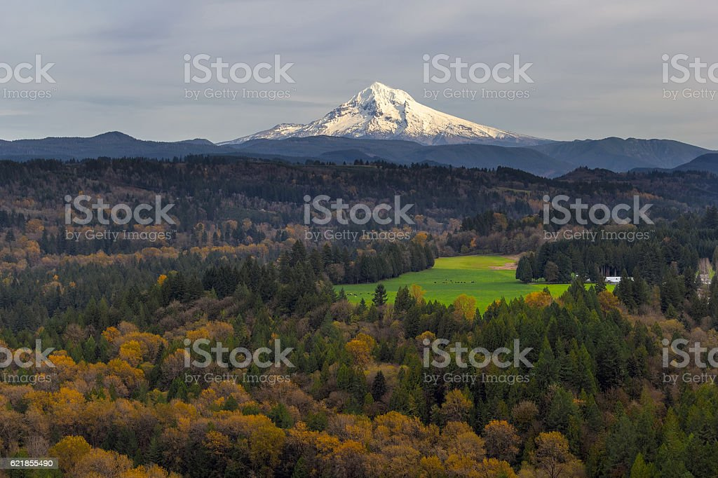 Mount Hood over Barlow Trail Route stock photo