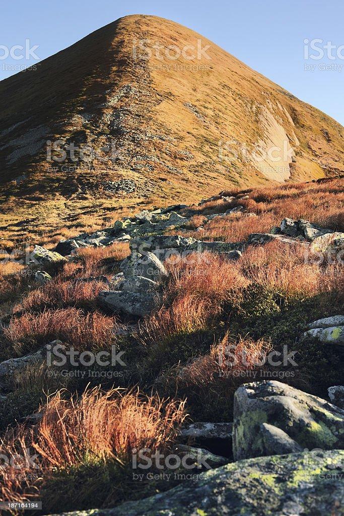 Mount Hoverla royalty-free stock photo
