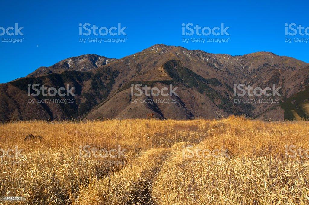 Mount Kenashi massif in winter stock photo