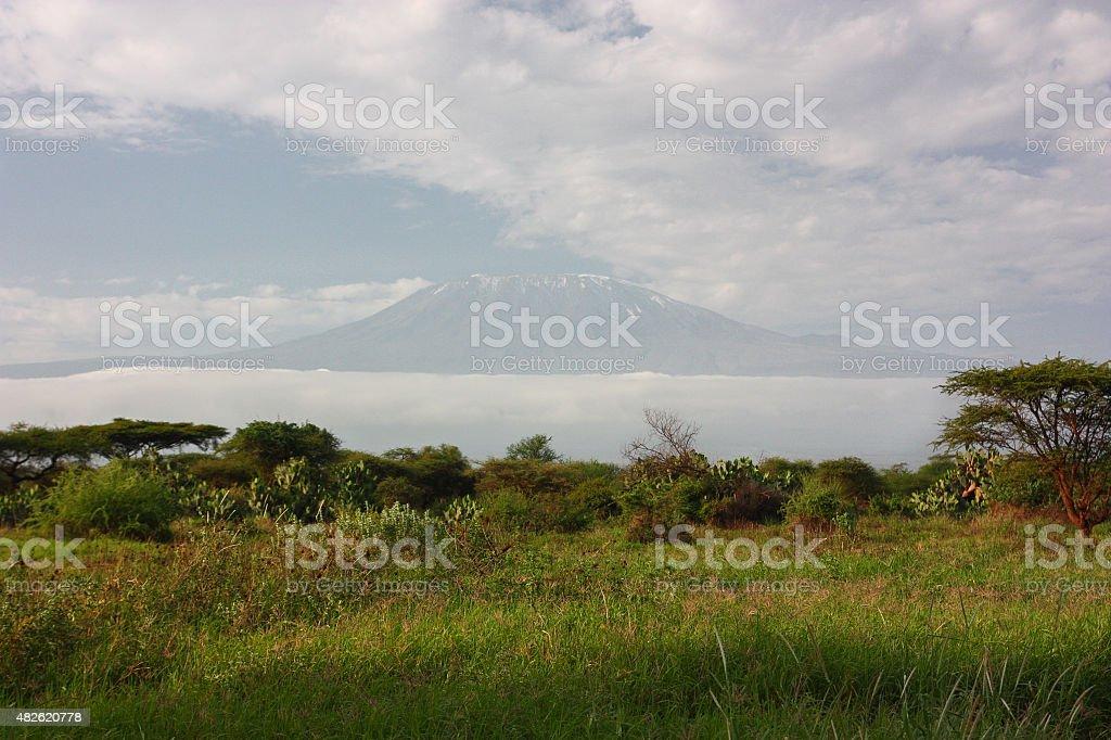 Mount Kilimanjaro royalty-free stock photo