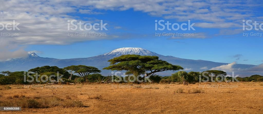 Mount Kilimanjaro Wide stock photo