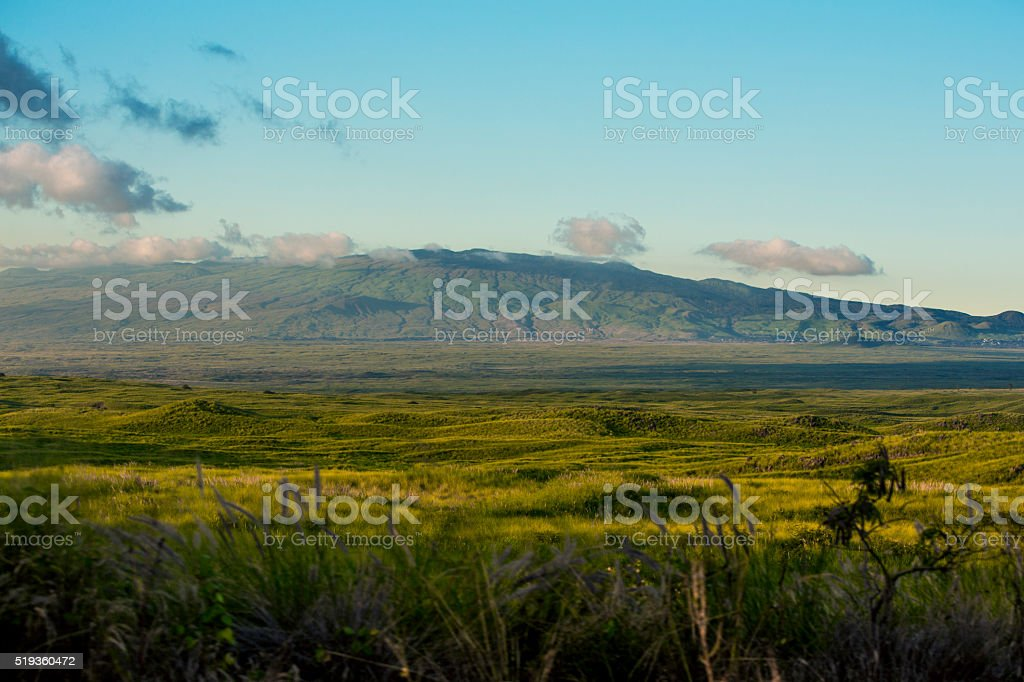 Mount Kohala stock photo