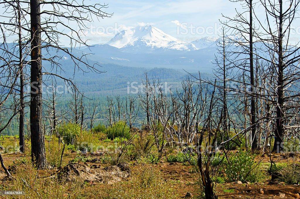 Mount Lassen stock photo
