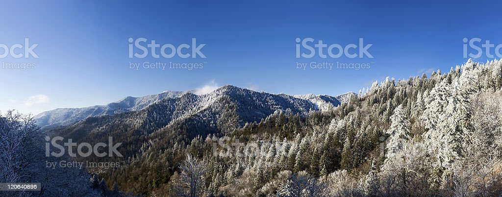 Mount leconte with snow in smokies stock photo