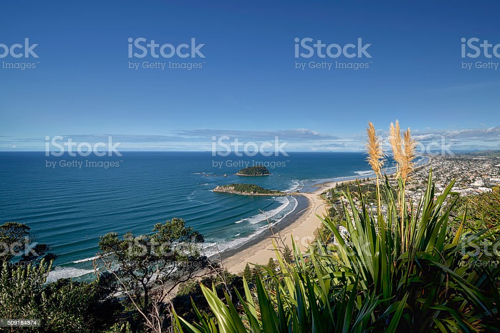 Mount Maunganui beach from the summit walking track. stock photo