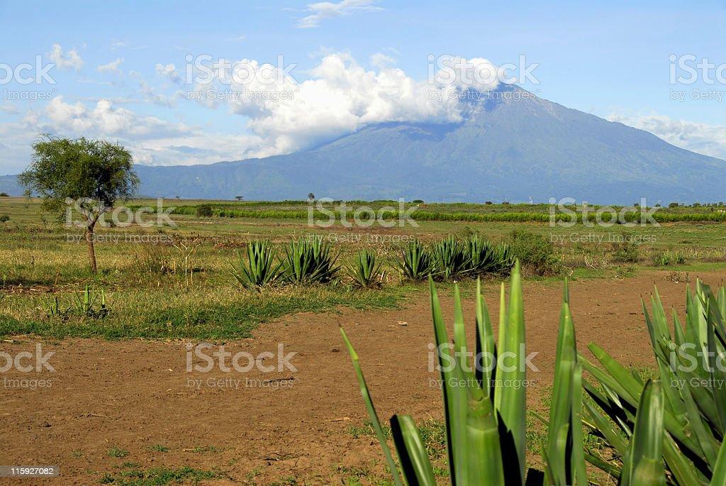 Mount Meru,Arusha National Park. stock photo