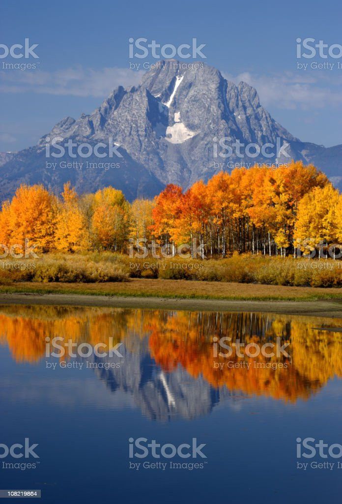 Mount Moran and Autumn Forest Reflected on Lake stock photo