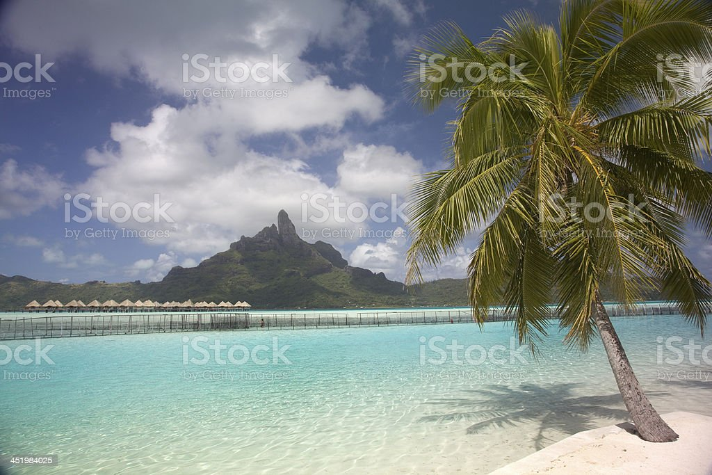 Mount Otemanu, BoraBora, French Polynesia. stock photo