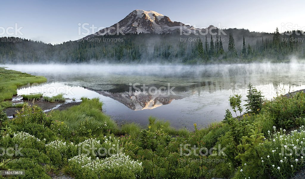 Mount Rainier Misty Sunrise Reflection Panorama royalty-free stock photo