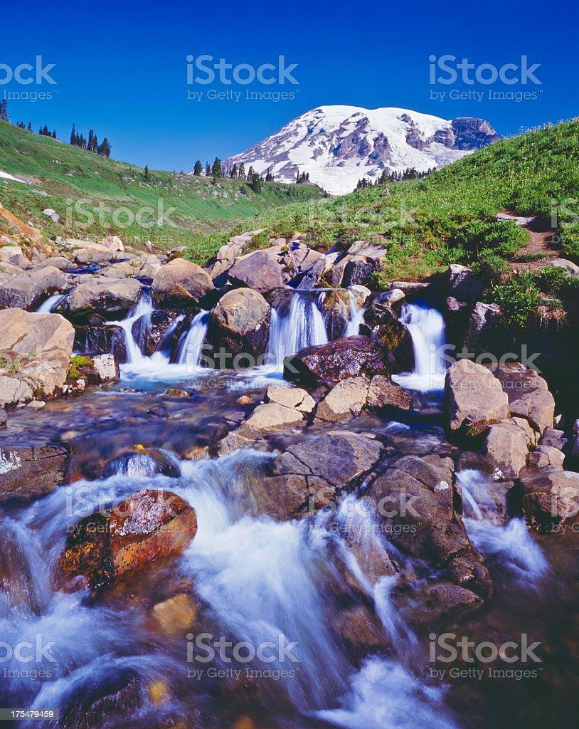 Mount Rainier National Park stock photo
