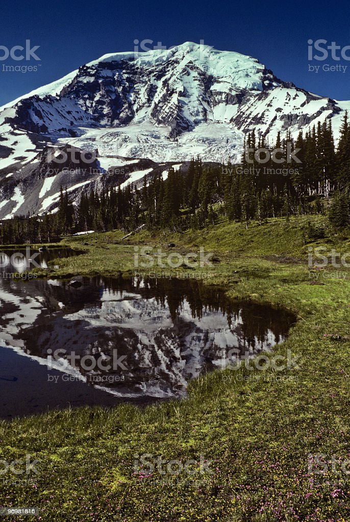 Mount Rainier Reflected in Pond stock photo