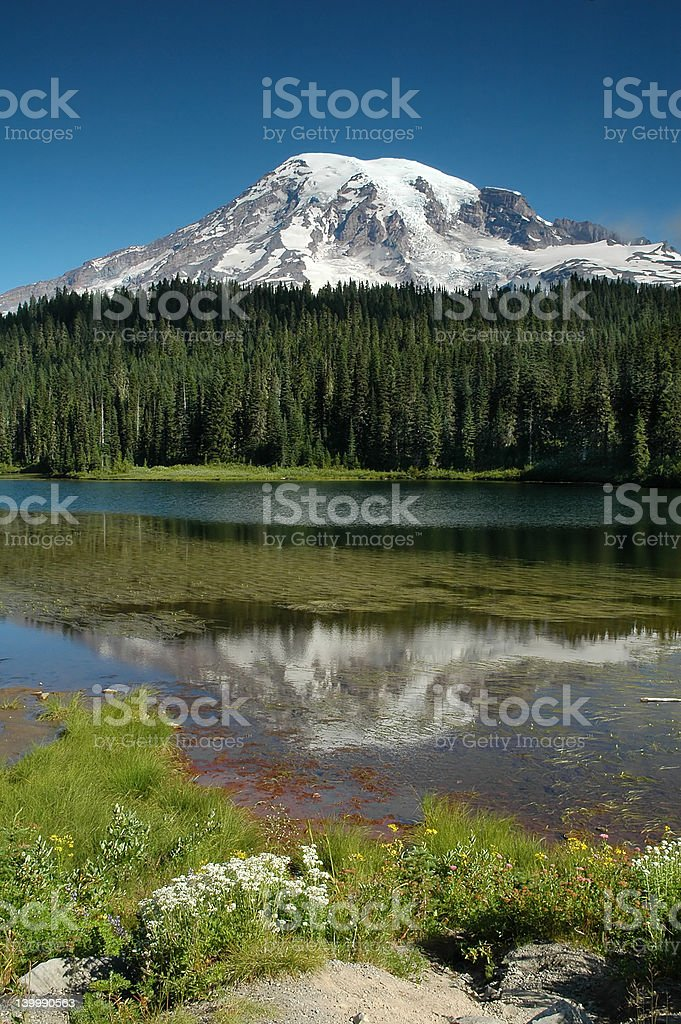 Mount Rainier - Reflection Lake royalty-free stock photo