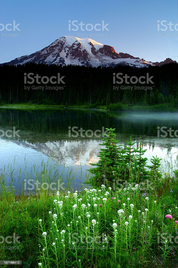 Mount Rainier Reflections royalty-free stock photo