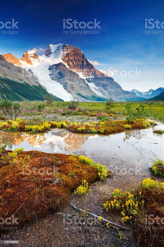 Mount Robson at Twilight stock photo